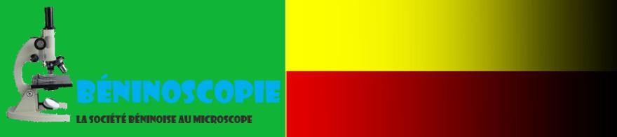Beninoscopie: le Bénin comme on y vit