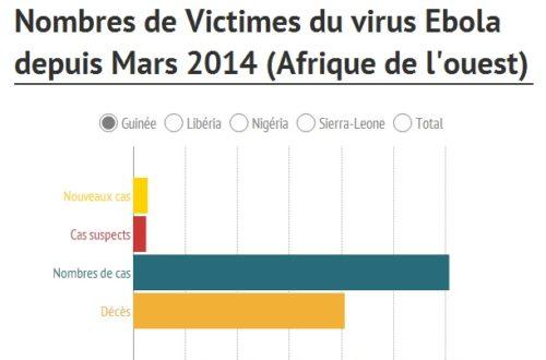 Article : Les ravages de l'épidémie d'Ebola en une infographie