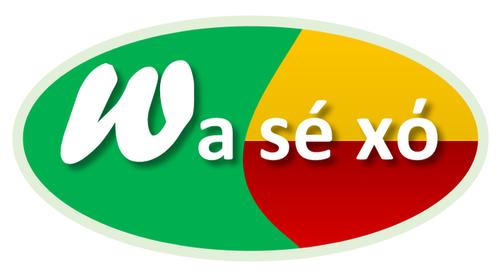 logo-wasexo-500